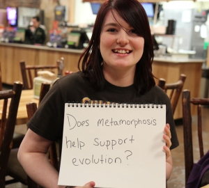 Does metamorphosis help support evolution?